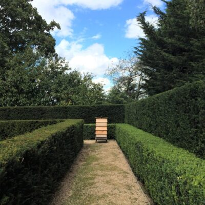 Higg 010919 Hive 2 perspective